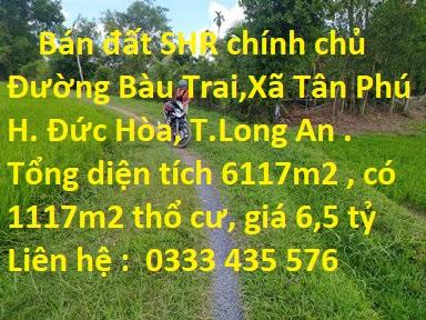 Bán Đất Sổ Hồng Riêng Chính Chủ  Đường Bàu Trai, Xã Tân Phú, Huyện Đức Hòa, Tỉnh Long An