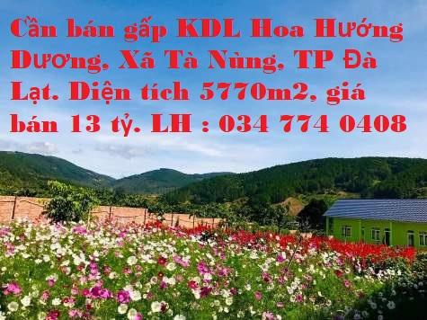 Cần bán gấp KDL Hoa Hướng Dương, ĐC Xã Tà Nùng, TP Đà Lạt