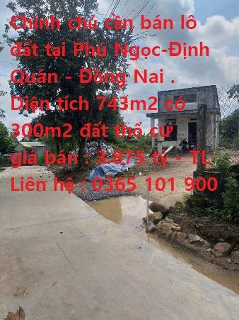 Chính Chủ Cần Bán Lô Đất Tại Phú Ngọc- Định Quán- Đồng Nai